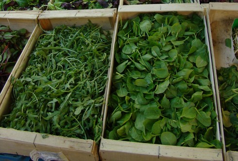 This is a thumbnail